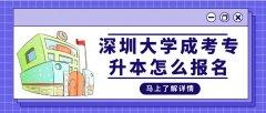 深圳大学成考专升本怎么报名?